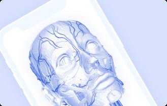 Aplicación 3D Anatomía Realidad Aumentada